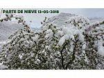 PARTE DE NIEVE 13-05-2018