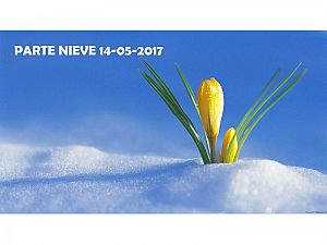 PARTE DE NIEVE 14-05-2017