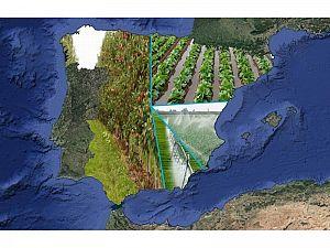 Uso del agua de regadío en España...