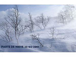 PARTE DE NIEVE 25-02-2017