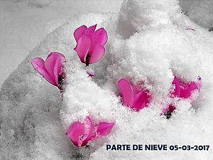 PARTE DE NIEVE 05-03-2017