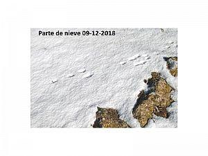 Parte de Nieve 09-12-2018