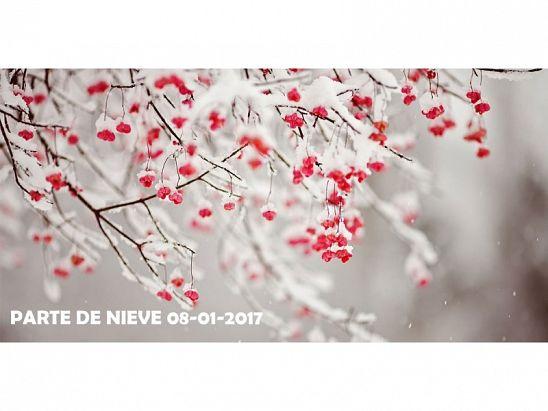 PARTE DE NIEVE 08-01-2017