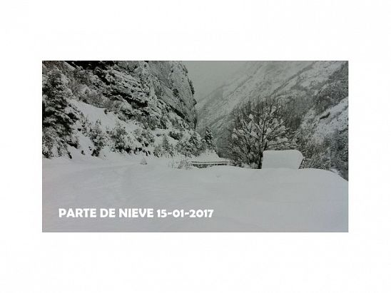 PARTE DE NIEVE 15-01-2017