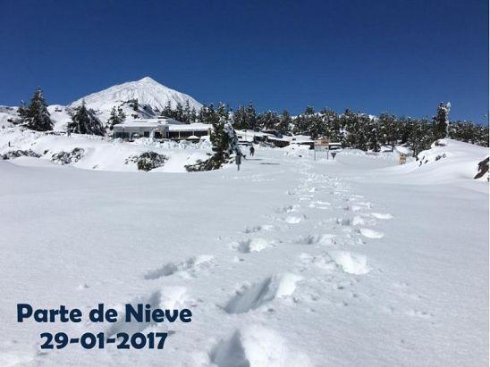 PARTE DE NIEVE 29-01-2017