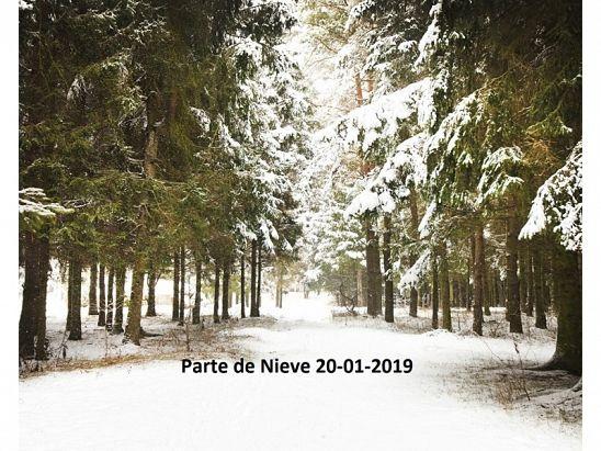 PARTE DE NIEVE 20-01-2019