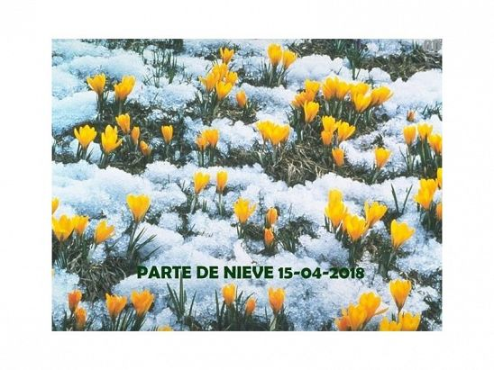 PARTE DE NIEVE 15-04-2018
